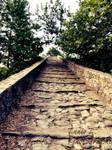 I walk this empty path...