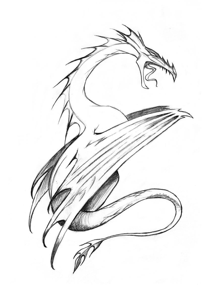 Line Drawing Dragon : Dragon line art by nuctameron on deviantart