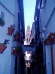 Evocative Cordoba Street by Bracy