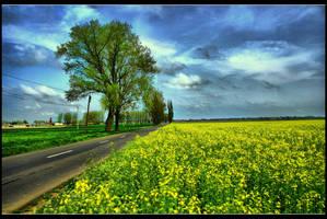 Road to Heaven by John77