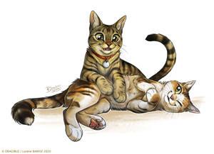 Lenny and Bulma