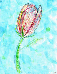 Floating Tulip