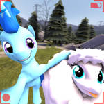 Selfie with fluffle Puff (with hud only)