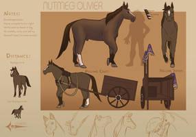 Nutmeg Reference Sheet
