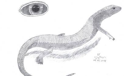 Lizard by PrismatDragon