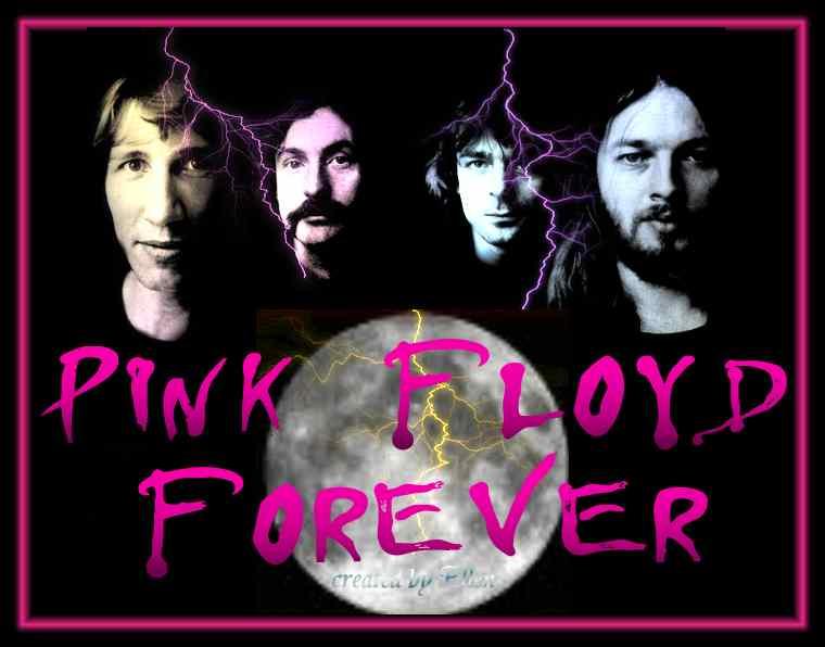 pink floyd discografia cult