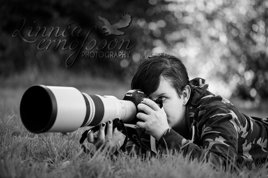ID by linneaphoto
