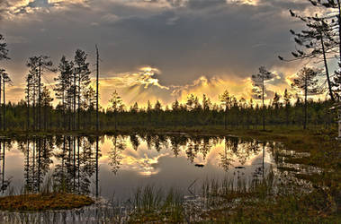 Lake Side by linneaphoto