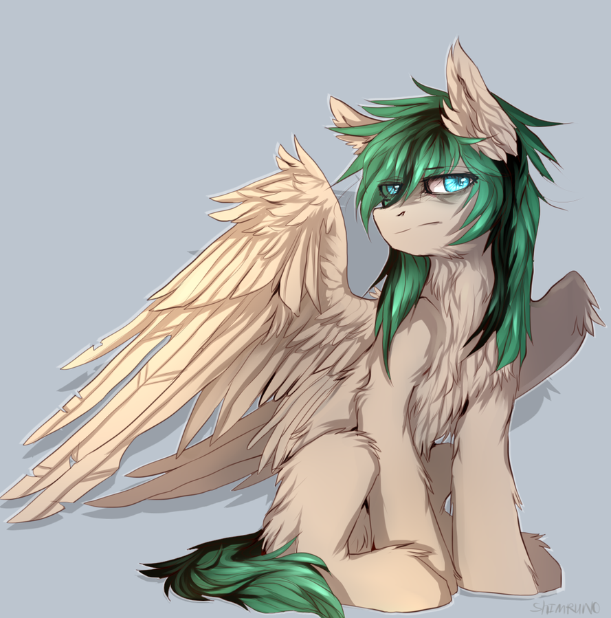 pony-commission by Shimruno