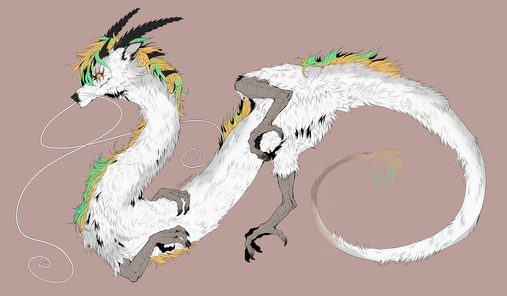 dragon tiiimeee by Shimruno
