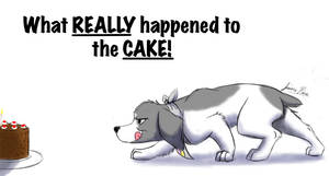 Cake - The true story