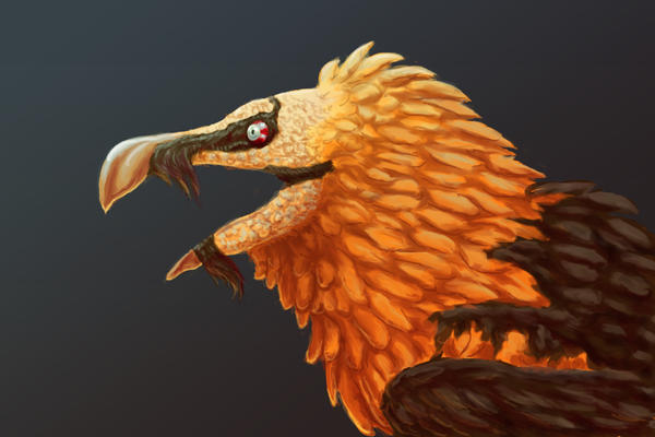 Bearded Vulture by Xailai on DeviantArt