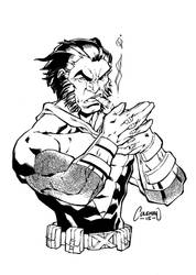 Wolverine by RedCole84