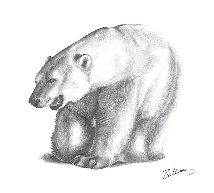 polar bear by wolfeiz