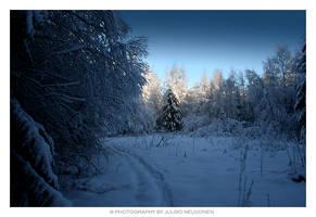 Snow, snow, snow by jadvice