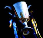 AFL Trophy
