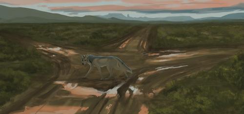 torn roads