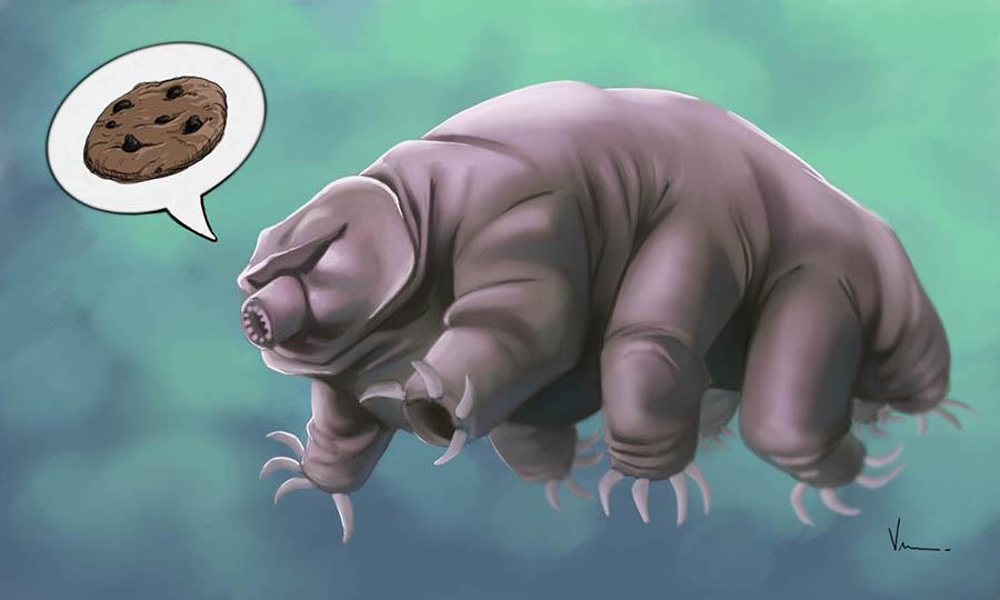 Tardigrade aka the Water Bear by NJValente