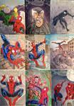 Spider-Man sketch cards