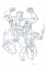 Hulk Vs Wolverine by NJValente