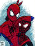 Spider-Bros