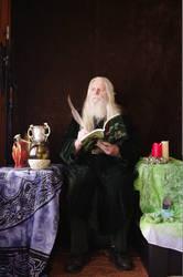 Elvish Series 11-13-12_079 by skydancer-stock