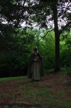 Forest Odin 2013-06-18 27