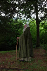 Forest Wizard 2013-06-18 58
