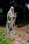 Wizard Gardening 2013-06-25 33