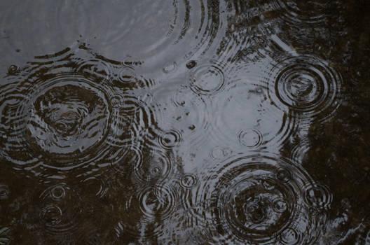 RainPuddles 2013-07-04 39