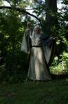 Wiz Robes Spear 2013-07-21 44