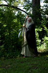 Wiz Robes Spear 2013-07-21 43