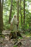 Pisqah Green Wizard 2011-05-24 123