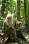 Pisqah Green Wizard 2011-05-24 67