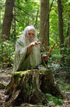 Pisqah Green Wizard 2011-05-24 57 by skydancer-stock