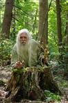 Pisqah Green Wizard 2011-05-24 49