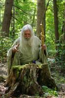 Pisqah Green Wizard 2011-05-24 46 by skydancer-stock