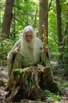 Pisqah Green Wizard 2011-05-24 46