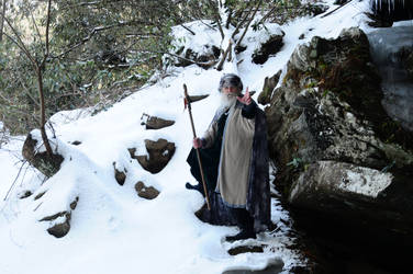 Wizard of Ice 2014-14-02 53 by skydancer-stock