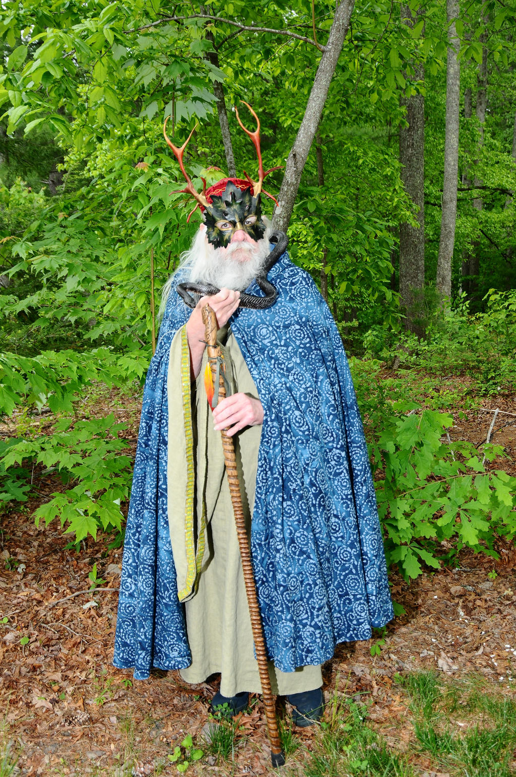 2014-05-17 Snake Wizard by Nick 17 by skydancer-stock