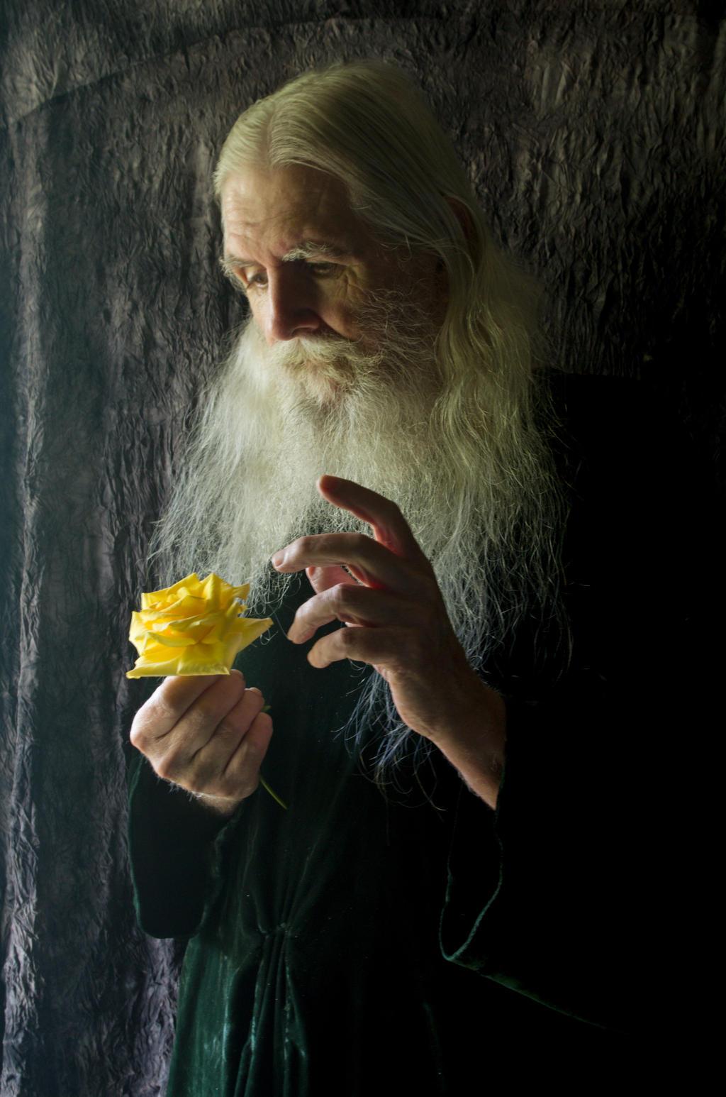 2015-05-19 Elder Portraits 08 by skydancer-stock