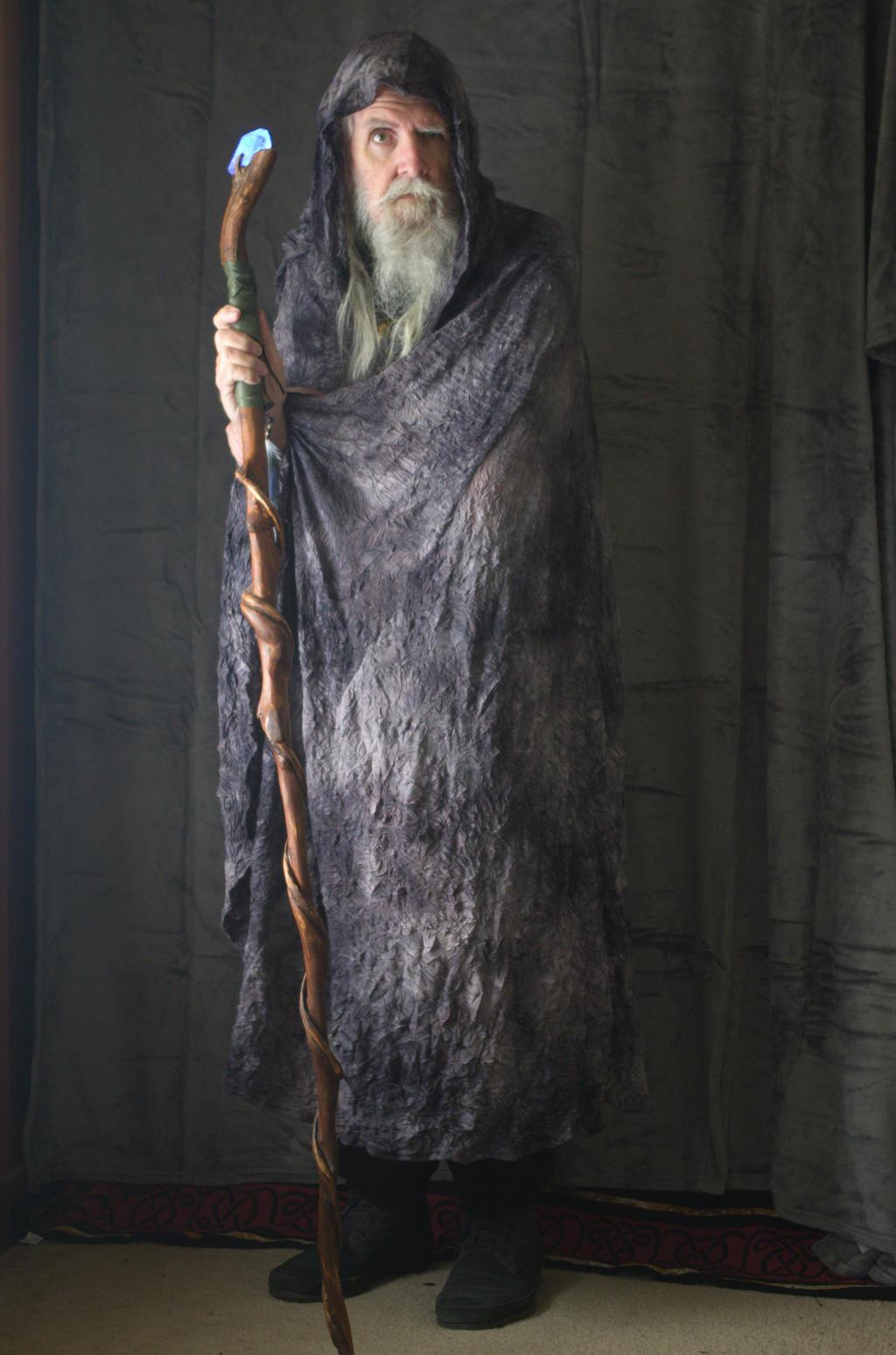 2017-03-31 Ancient Druid 22