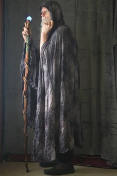 2017-03-31 Ancient Druid 10