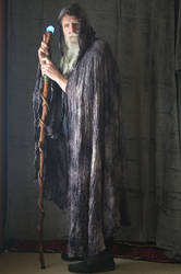2017-03-31 Ancient Druid 09