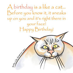 Birthday Cat  by grittycity