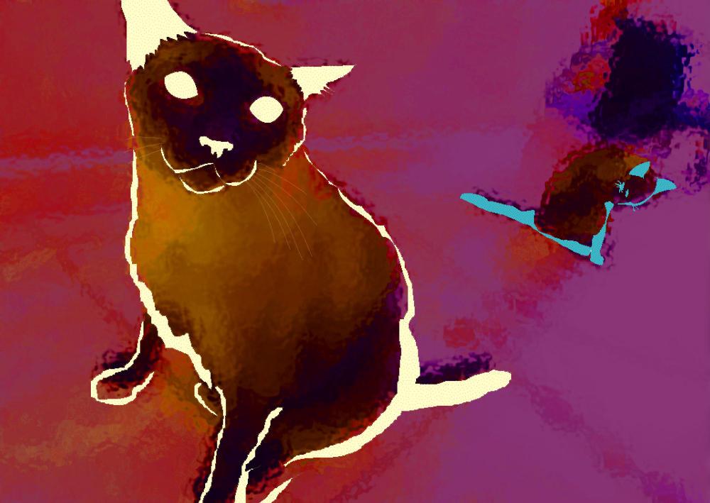 Cat by lanika