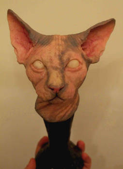 Sphynx Cat Cast and Painted