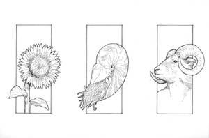 Golden Spiral Inks by subtle-design