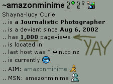 one thousand pageviews by amazonminime