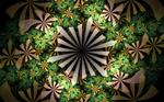 stripeflower pattern